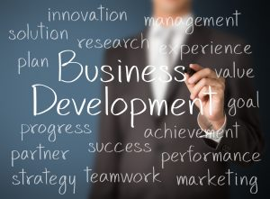 Are You Aiming For A Business Development Manager's Role?