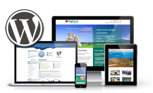 Custom WordPress Websites In Essex Replace The Hardcoded Websites