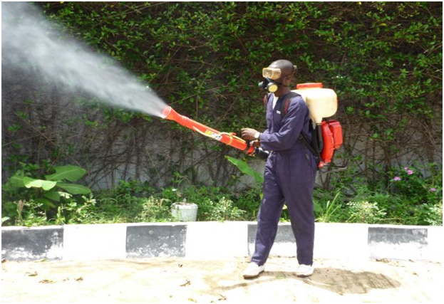 Controlling Pests Effectively With The Services Of Pest Controllers London