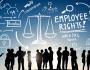 Employment Lawyer Miami