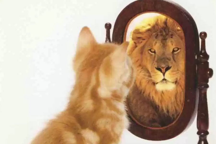 7 Ways To Increase Your Self-Esteem