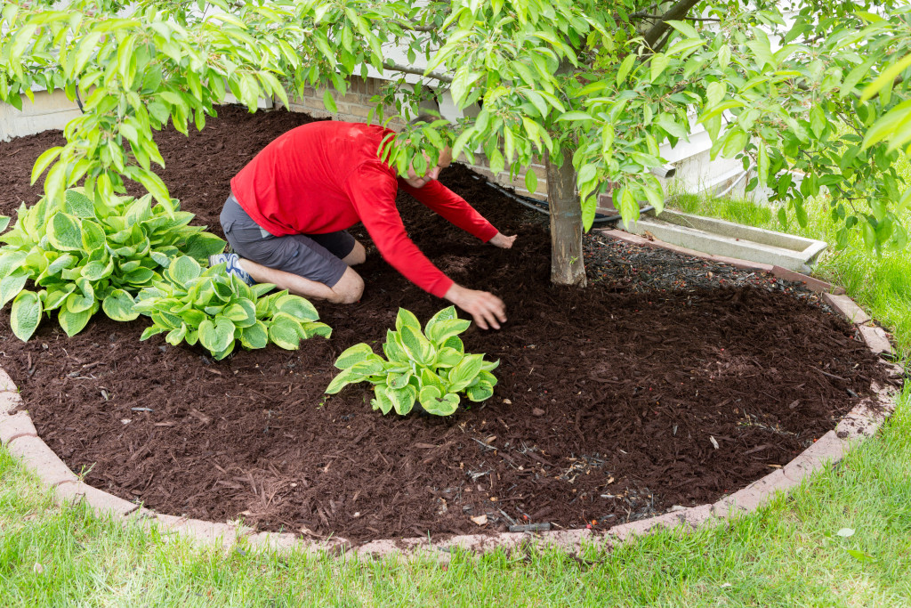 How To Start Mulching