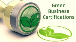 Apply For These 8 Green Certificate Programs To Give Your Business An Edge!