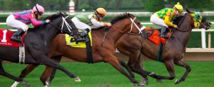 Horse Racing. The Sport Of Kings