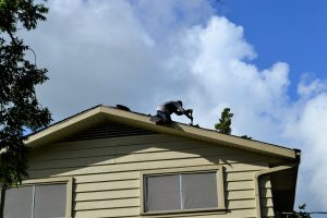How Much a Metal Roof Replacement Cost